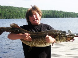 Large Northern Pike Fishing