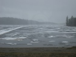 There is still lots of hard ice out there, and yes, it is snowing!